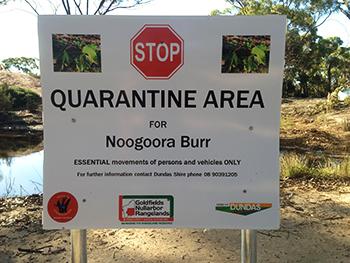 Quarantin sign for Noogoora Burr weed
